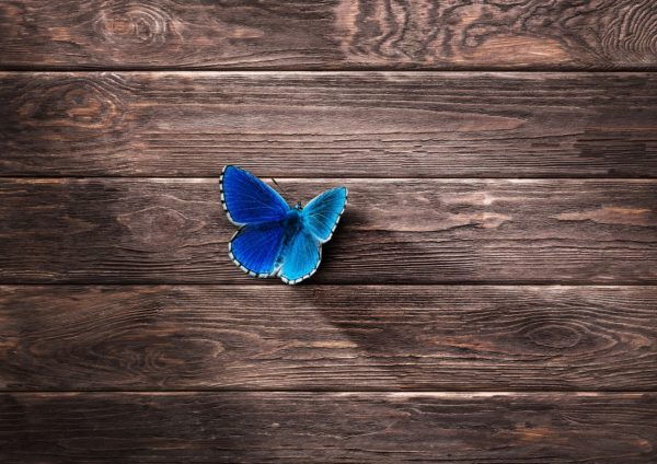 Why Day-of-Performance Butterflies May Actually Be a Good Thing